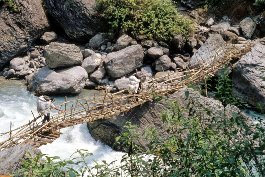 Le pont de bambou